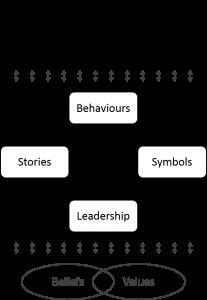 culture diagram